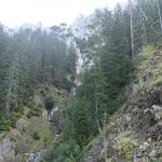 Erosion, rechts davon haben wir Bäume vor Verbiss geschützt