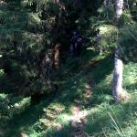 Brunhilde und Gregor im Anmarsch