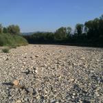 Bregenzer Ach Uferzone