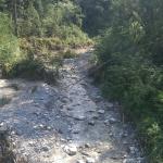 Wildbach Richtung Rhein