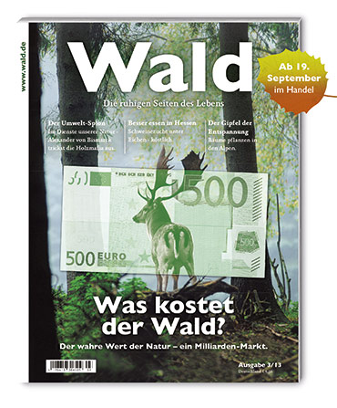 WALD_cover