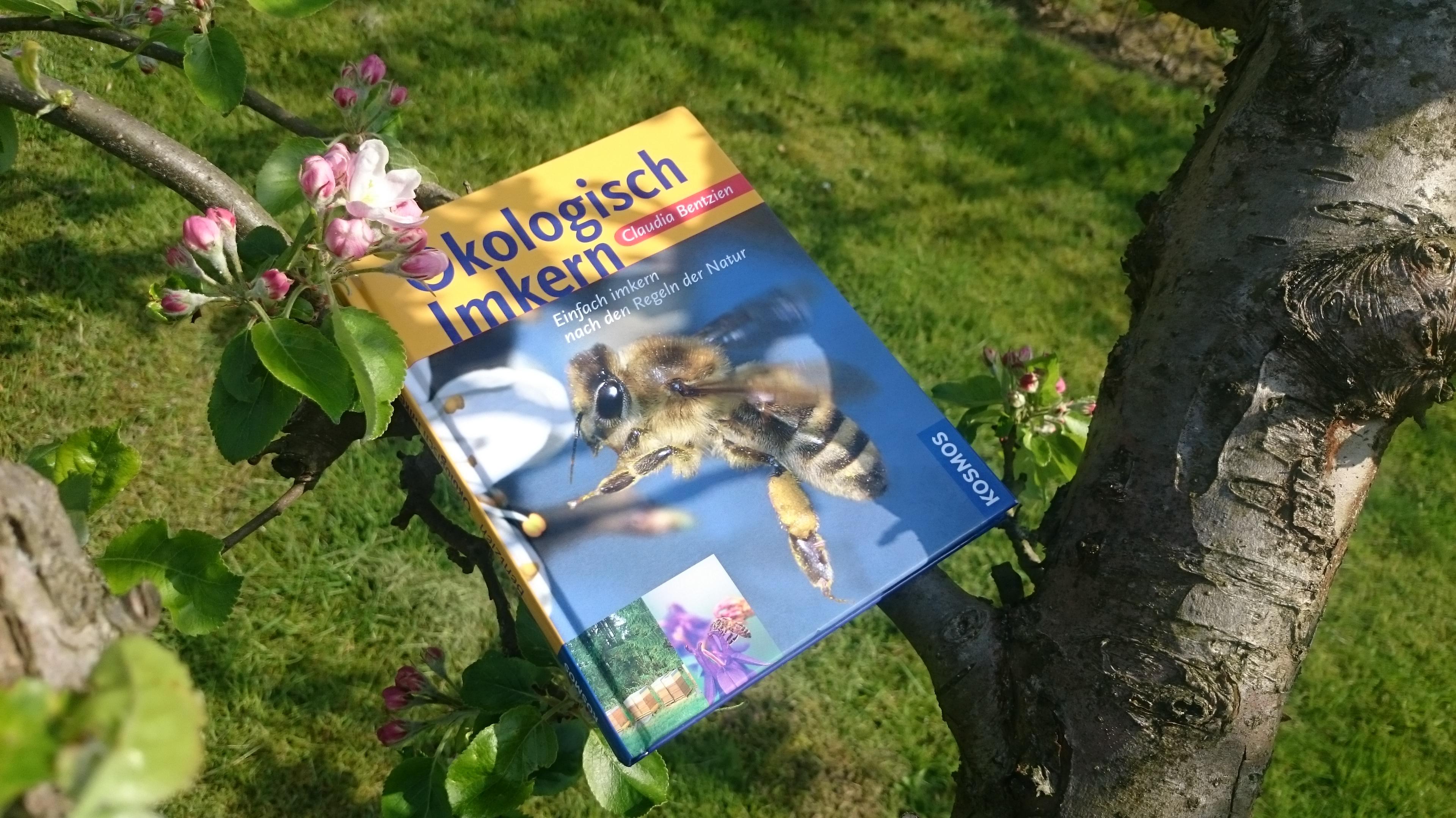 Buch Ökologisch Imkern mit Kirschblüte im Mai