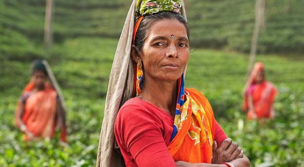 Frau traditionell mit Kantha Dupatta Salwar Kamiz